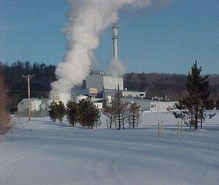 Allegany Station, Fillmore, New York, USA – 62 MW